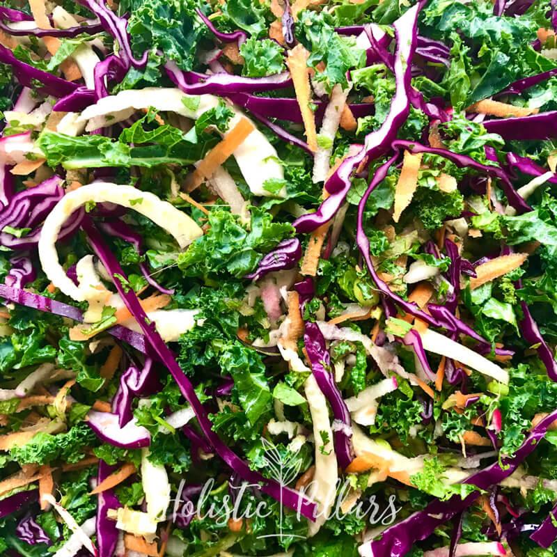 raw coleslaw recipe